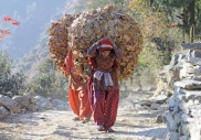 Indian women carrying bales of leaves
