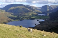Fleetwith Pike seen across Crummock Water and Buttermere